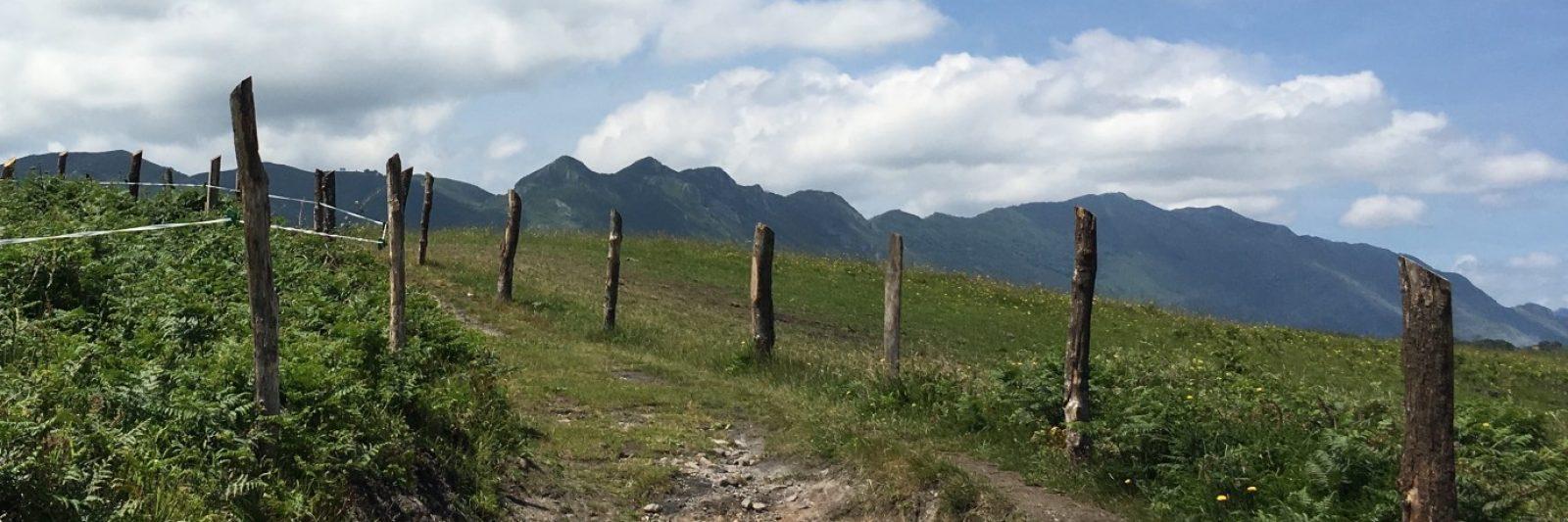 Camino de senderismo